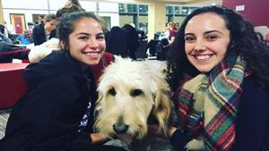 "Gannon University's Recreation and Wellness Fair will be an opportunity for employees and students to ""paws and de-stress"" with the help of some furry friends."