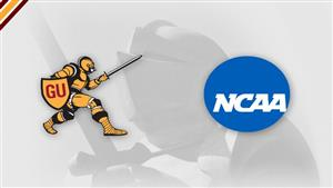 Gannon was named a finalist for the NCAA Division II Award Of Excellence for the second time in the past three years.